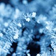 Tinsel. Christmas decoration. — Stock Photo #41208107