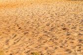 Coastal sand — Stock Photo