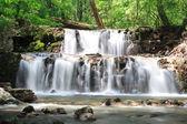 Cachoeira na floresta — Fotografia Stock