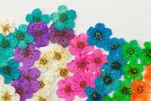 Decorative montage compilation — Stock Photo