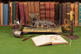 Antique leather books, lamp and reading glasses on green blotter. — Stock Photo