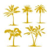 Conjunto de siluetas de árbol de palma — Vector de stock