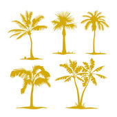 Uppsättning av palm tree silhuetter — Stockvektor