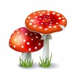 Red Mushroom Amanita — Stock Vector #24002599