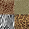Animal Skin Patterns - Stock Vector