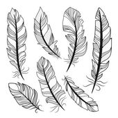 Vector silhouettes feathers — Stock Vector