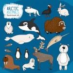 Set of hand-drawn arctic animals — Stock Vector