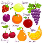 Selection of colorful tropical fruit with labels — Stock Vector