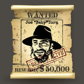 Wild west style wanted poster — Stock Vector