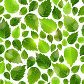 Fresh green leaves seamless background pattern — Stock Vector