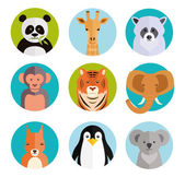 Cute animals in colored round badges — Stock Vector