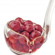 Stock Photo: Cherries in ladle