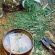 Stock Photo: Medicinal herbs
