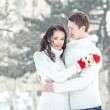 Stock Photo: Couple on snow