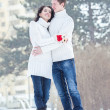 Stock Photo: Smiling couple on snow