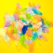 Colorful feather — Stock Photo