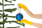 Dressing christmas tree — Stock Photo