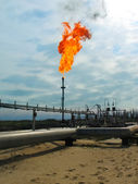 Burning oil gas flare — Foto Stock