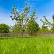 Wooden fence on nice green meadow — Stock Photo
