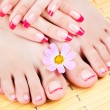 Stock Photo: Womhands and feet with pink manicure