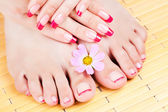 Woman hands and feet with pink manicure — Stock Photo