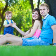Happy family walking in the summer park. picnic — Stock Photo