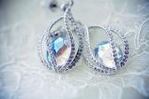 Swarovski rystals. earrings — Stock Photo
