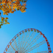Ferris wheel and autumn foliage — Stock Photo #14067143