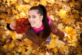 Pretty girl on a background of autumn leafs. top view — Stock Photo
