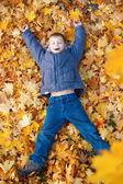 Felice ragazzo sta mentendo in foglie gialle — Foto Stock