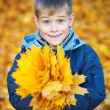 Happy boy on a background of yellow autumn leafs — Stock Photo #15213255