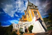 Bride and groom is hugging near the ancient building — Stock Photo