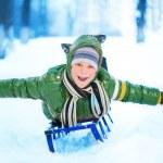 Little boy on sleigh — Stock Photo #18312555