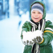 Stock Photo: Boy is plaing with snow on nature. Lots of snow.