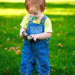 Little baby is playing with a purse in the green park — Stock Photo