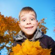 Cheerful kid on a background of sky and autumn trees — Stock Photo #19266821