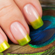 ������, ������: Fingers with green manicure on the peacock feather