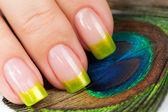 Finger mit grünen maniküre auf der pfauenfedern — Stockfoto