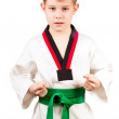 Royalty-Free Stock Photo: Young boy training karate.