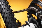 Rower górski, przednie koło zębate i opony — Zdjęcie stockowe