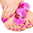 Stock Photo: Pink manicure and pedicure with orchid flower.