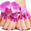Female hands with pink orchid — Stock Photo #23790367
