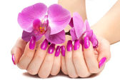 Female hands with pink orchid — Stock Photo