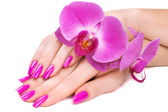 Hands with pink orchid — Stock Photo