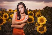 Sexy woman in a sunflower's field — Foto Stock