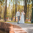 Bride and groom are sitting in the park — Foto Stock