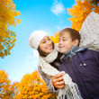 Mom with son in a yellow autumn park — Stock Photo