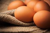 Eggs on burlap — Stock Photo