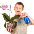 Little boy is watering the flowers — Stock Photo