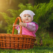 Cute baby in basket in the green park — Stock Photo